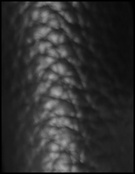 nappaleder schwarz